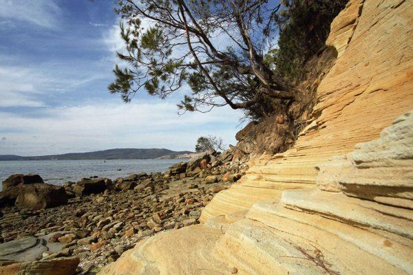 Tasmania - Coningham